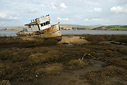 Point Reyes, California, January 28, 2007-A beached ship rests on the tidal flats of Tomales Bay. The ship is called the Point Reyes.