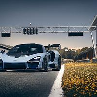 McLaren Senna Global Test Drive - Estoril - June 2018<br /> Copyright Free<br /> Ref:  Mclaren-Senna-GlobalTestDrive-1384.JPG