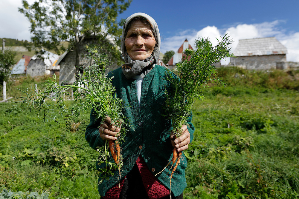 Local woman holding carrots, freshly picked from her garden, village of Lukomir, Bosnia and Herzegovina.  At 1495m Lukomir is the highest and most isolated village in Bosnia and Herzegovina.