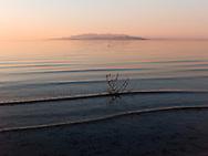 http://Duncan.co/tumbleweed-in-great-salt-lake