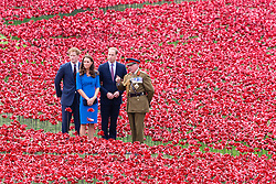 "© Licensed to London News Pictures. 05/07/2014. London, UK. The Duke and Duchess of Cambridge and Prince Harry visit the Tower of London's ""Blood Swept Lands and Seas of Red"" ceramic poppy installation in the Tower of London moat. Photo credit : Vickie Flores/LNP"