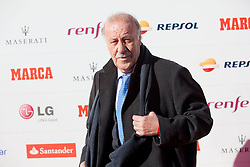 26.11.2013, Callao Cinema, Madrid, ESP, Rafael Nadal, Marca Legend Award, Gala zum Gedenken an 75 Jahre der Sport-Tageszeitung, im Bild Spanish football team coach Vicente del Bosque// attends the 75th Anniversary Marca Awards ceremony at callao cinema in Madrid, Spain on 2013/11/26. EXPA Pictures © 2013, PhotoCredit: EXPA/ Alterphotos/ Victor Blanco<br /> <br /> *****ATTENTION - OUT of ESP, SUI*****