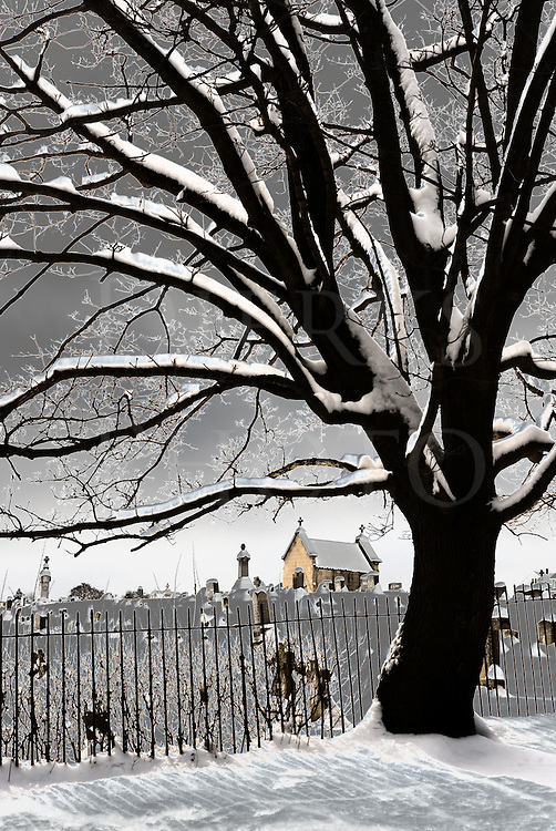 This cemetery view had a special digital process applied to it in order to fit the title better and I was trying to go from just &ldquo;spooky-looking&rdquo; to &ldquo;spookier&rdquo;. That digital twist-up turned the snow to gray and heavily contrasted the tree limbs with a strange light, both of which added to the weirdness. I most often don't use any processing this heavy handed, but this one called for it and I'm glad it worked out well. It's unusual yet beautiful, weird and wonderful.<br /> <br /> This is the companion to another image in the catalog, Exit Only, #10146. The two images were created in sequence on the same overcast winter day in early March about fifteen steps apart, and the cemetery lies about ten blocks from the house in my Pennsylvania hometown.