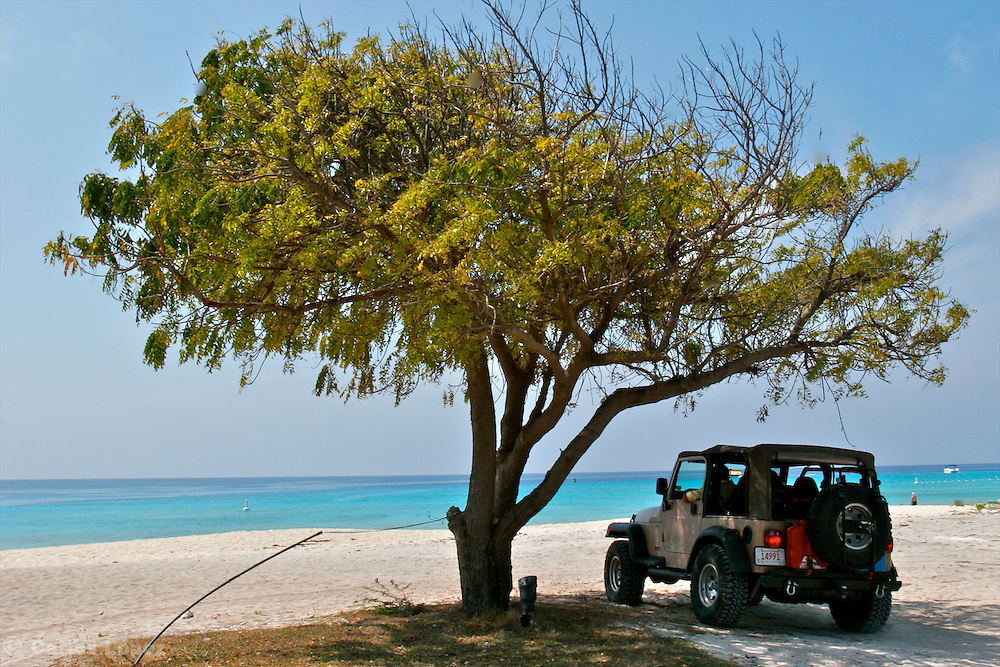 A CAR IS UNDER THE SHADE OF A TREE IN ONE BEACH OF GRAND TURK AND CAICOS IN THE CARIBBEAN.