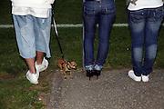 Am Fussballfeld: Modetrends von gestern? Pinscher, Chihuahua, little dog, sneakers, stilettos und Plattfüsse, schuhe, Fussballfeld © Romano P. Riedo