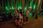 Walking through the woods illuminated messages, of peace and love, in the early hours of the morning - The 2016 Latitude Festival, Henham Park, Suffolk.