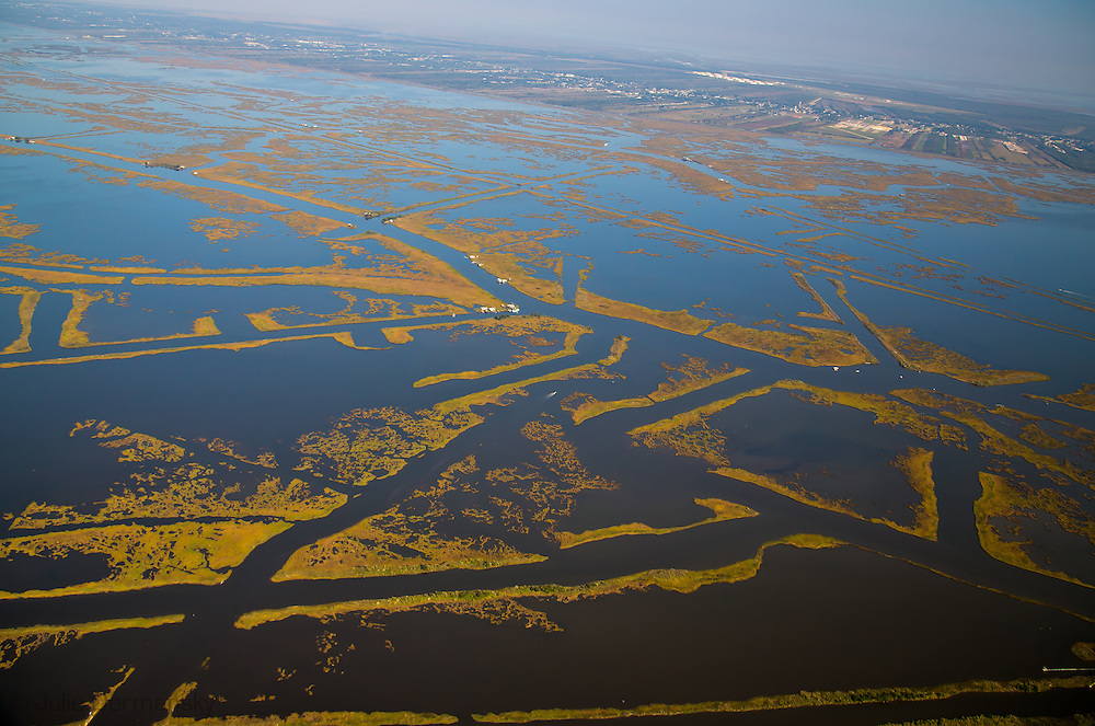Golden Meadow, Louisiana, in Lafourche Parish, one of the coastal parishes that opted not to sue the oil and gas industry for past practices that failed to restore coastal wetlands.The Louisiana coast loses a football field's worth of land every 38 minutes. This staggering rate of land loss has been brought on by climate change, subsidance. and coastal erosion accelerated by human activities, including water diversion projects and damage done by the oil and gas industry.