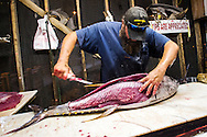 July 16, 2014; Virginia Beach, VA, USA; CD cleans tuna. Mandatory Credit: Peter J. Casey