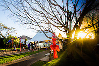 coromandel town illume festival of light 2016 coromandel peninsula photography by fleaphotos  felicity jean photography
