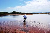 Seawater Biofuels