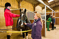 Students at Bishop Burton College, East Yorkshire. Student Chris Blows plats the mane while curriculum leader of equine Linsey Ramsden look's on.