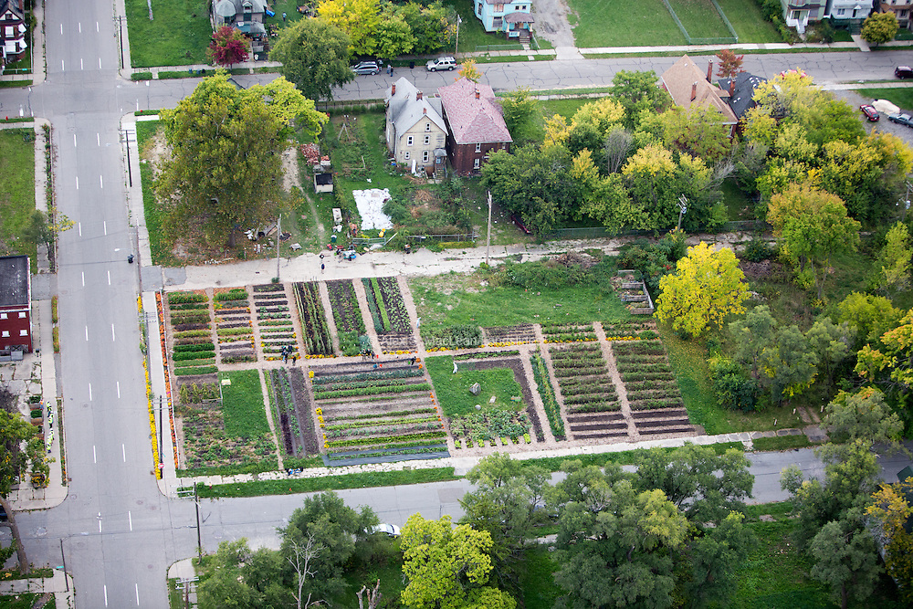 The Michigan Urban Farming Initiative's Brush Street Farm at the corner of Brush and Custer Street, northwest of downtown Detroit. The initiative's farm covers a full acre of land, with a planned community resource center across the street.