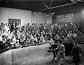 1952 - Christmas fat-stock at Dublin Cattle Market