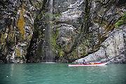 Kayaker observing Black-legged Kittiwake colony on cliff with Cascade and Glacier fed Water