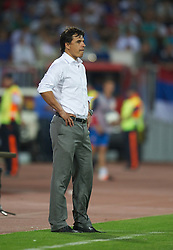 NOVI SAD, SERBIA - Tuesday, September 11, 2012: Wales' manager Chris Coleman during the 2014 FIFA World Cup Brazil Qualifying Group A match against Serbia at the Karadorde Stadium. (Pic by David Rawcliffe/Propaganda)