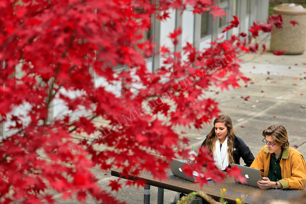 Sara Coppo, of Marshall (PR major), and Ian Ruhala, Oxford Journalism major, study outside of the University Center on a very mild November day on the campus of Central Michigan University. Photo by Steve Jessmore/Central Michigan University