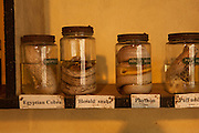 Preserved african snake specimens in glass jars in part of the education center at the Chiangali Wildlife Orphanage in Bulawayo, Zimbabwe. © Michael Durham / www.DurmPhoto.com