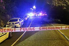Wellington-Multiple stabbings, one dead in Johnsonville