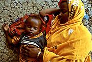 Scenes of desperate Somali refugees at Kaukoma Refugee Camp.