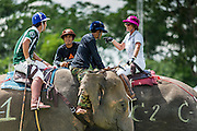 "28 AUGUST 2014 - BANGKOK, THAILAND:  Mahouts and players socialize during a break in the play at the King's Cup Elephant Polo Tournament at VR Sports Club in Samut Prakan on the outskirts of Bangkok, Thailand. Each elephant carries two people, the polo player and mahout, who actually controls the elephant. The tournament's primary sponsor in Anantara Resorts. This is the 13th year for the King's Cup Elephant Polo Tournament. The sport of elephant polo started in Nepal in 1982. Proceeds from the King's Cup tournament goes to help rehabilitate elephants rescued from abuse. Each team has three players and three elephants. Matches take place on a pitch (field) 80 meters by 48 meters using standard polo balls. The game is divided into two 7 minute ""chukkas"" or halves.     PHOTO BY JACK KURTZ"