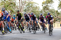Jessica Allen (AUS), Ella Harris (NZL) in the bunch on Stage 1 of 2020 Santos Women's Tour Down Under, a 116.3 km road race from Hahndorf to Macclesfield, Australia on January 16, 2020. Photo by Sean Robinson/velofocus.com