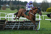 Ladbrokes Ireland Boyne Hurdle at Navan Race Course, 14th February 2016<br /> Edward Cawley trained Flemenstorm with Philip Enright in the saddle clear the last at Navan<br /> Photo: David Mullen / www.quirke.ie ©John Quirke Photography, Unit 17, Blackcastle Shopping Cte. Navan. Co. Meath. 046-9079044 / 087-2579454.
