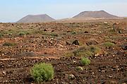 Arid semi-desert landscape with old volcano cones, near Corralejo, Fuerteventura, Canary Islands, Spain