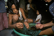 Children cleaning small nuggets of gold after processing the ore with mercury. Mount Diwata, Mindanao, The Philippines.