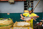 09 JUNE 2014 - YANGON, MYANMAR: A boy packs fresh fish on ice in the San Pya Fish Market (also spelled Sanpya). San Pya Fish Market in Yangon is one of the largest wholesale fish markets in Yangon. The market is busiest in early in the morning, from before dawn until about 10AM.    PHOTO BY JACK KURTZ