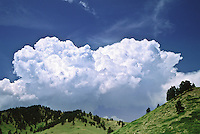 Cumulus congestus clouds over the Bighorn Mountains, Wyoming.