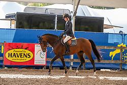 Ahlmann Hannes, GER, Luke Lemon<br /> FEI WBFSH Jumping World Breeding Championship for young horses Zangersheide Lanaken 2019<br /> © Hippo Foto - Dirk Caremans<br /> 20/09/2019