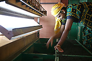 A female worker sorts and grades the High Grown unblended Ceylon Tea at the Glenloch tea factory in Katukitula, Sri Lanka. Grading is the last main stage in tea production. Picking, semidrying, rolling, drying, cleaning, fermenting are the 6 stages that proceed it. Many of the surrounding Tea factories were built in the last century, as the British planter, James Taylor in 1867, introduced tea to Sri Lanka. The Glen Loch Tea Factory still uses some British-made machinery, which is over 100 years old.