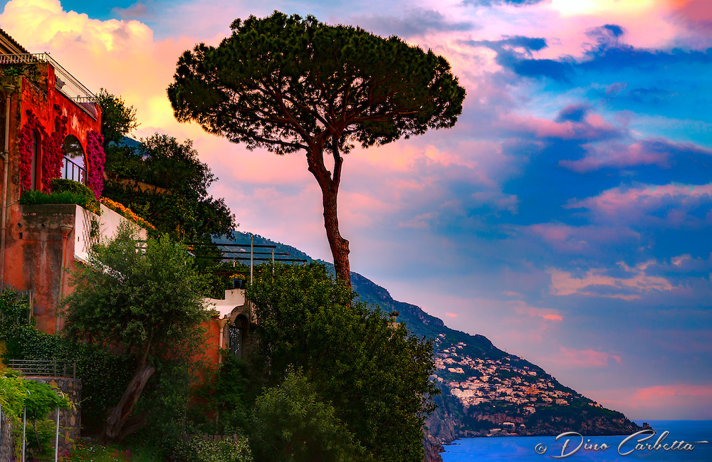 """Pine tree rises to the sky as the sun sets over the cliffs of Positano""…<br />