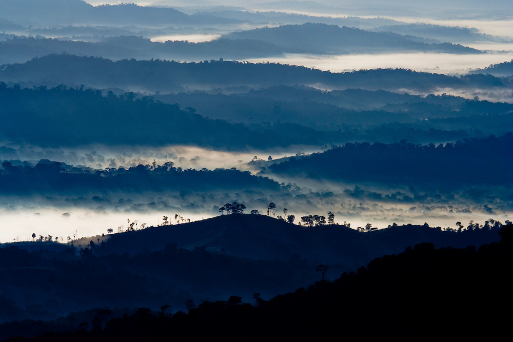 Clouds nestle among forested ridges as the sun rises in Serra Bonita, Bahia, Brazil