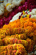 Flowers in Market, Jaipur