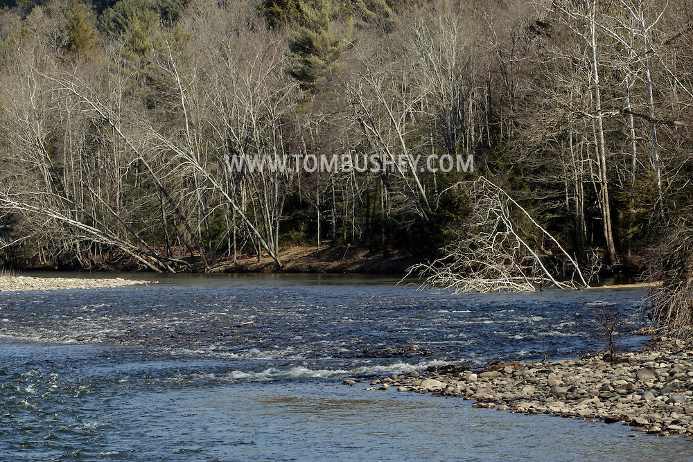 Goddefroy, New York  - The Neversink River flows through the Nature Conservancy's Neversink Preserve on  March 7, 2012.