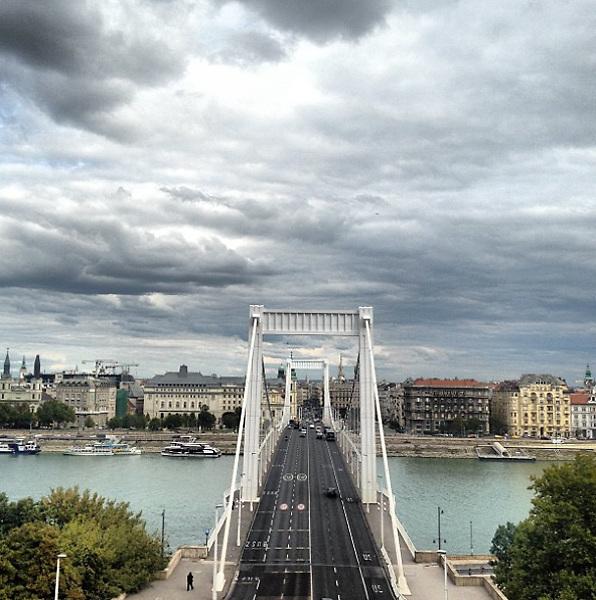 Budapest Erzsébet Hid ( Elisabeth Bridge) 2015, man walking.