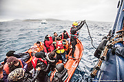 "9th of Jan 2016<br /> <br /> Dramatic rescues as refugee deaths in Aegean reach record high<br /> <br /> A MOAS rescue swimmer helps guide the migrant boat alongside the  MOAS mothership, Responder. The  overloaded open boat carrying 55 migrants. made a distress call to say they had lost engine power and were drifting in the heavy swell. The SAR team launched their fast rescue craft and brought the migrant boat next to the MOAS mothership, Responder. It was an extremely challenging rescue because of the heavy sea swell, but all the migrants were safely brought aboard.<br /> <br /> ATHAGONISI - Search and rescue charity Migrant Offshore Aid Station (MOAS) has assisted hundreds of refugees from hostile seas between Turkey and Greece since it began operating in the region just before Christmas.<br />  <br /> The MOAS crew has witnessed shocking scenes of life and death, having led complex deep water and nearshore rescues over the past four weeks. The human toll has been described as ""distressing"" and ""desperate"" by reporters who have been embedded with MOAS.<br />  <br /> MOAS, which saved almost 12,000 refugees from the Mediterranean Sea since 2014, expanded its operations to the Aegean Sea thanks to thousands of donations that reached the organisation after the horrific death of Alan Kurdi, a Syrian toddler who was photographed washed ashore on a Turkish beach last September.<br />  <br /> The charity is operating off the Greek island of Agathonisi from a 51-metre vessel equipped with two fast rescue launches named after Alan and his brother Galip, who also died in September's shipwreck.<br />  <br /> According to the International Organisation for Migration (IOM), 2016 appears to be a record year for both refugee arrivals and deaths at sea. In the first three weeks, fatalities have already reached 113, which is more than the past two Januaries combined. In the same three-week period, some 37,000 migrants and refugees have reached Italy and Greece by sea, which is 10 times the total of 2015.<br />  <br /> ""What we are witnessing in the Aegean Sea is"