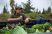 LIVING OFF THE GRID<br /> The summer intern Josh Jasso from Tuscon, AZ.<br /> Anchor Point, Alaska, USA
