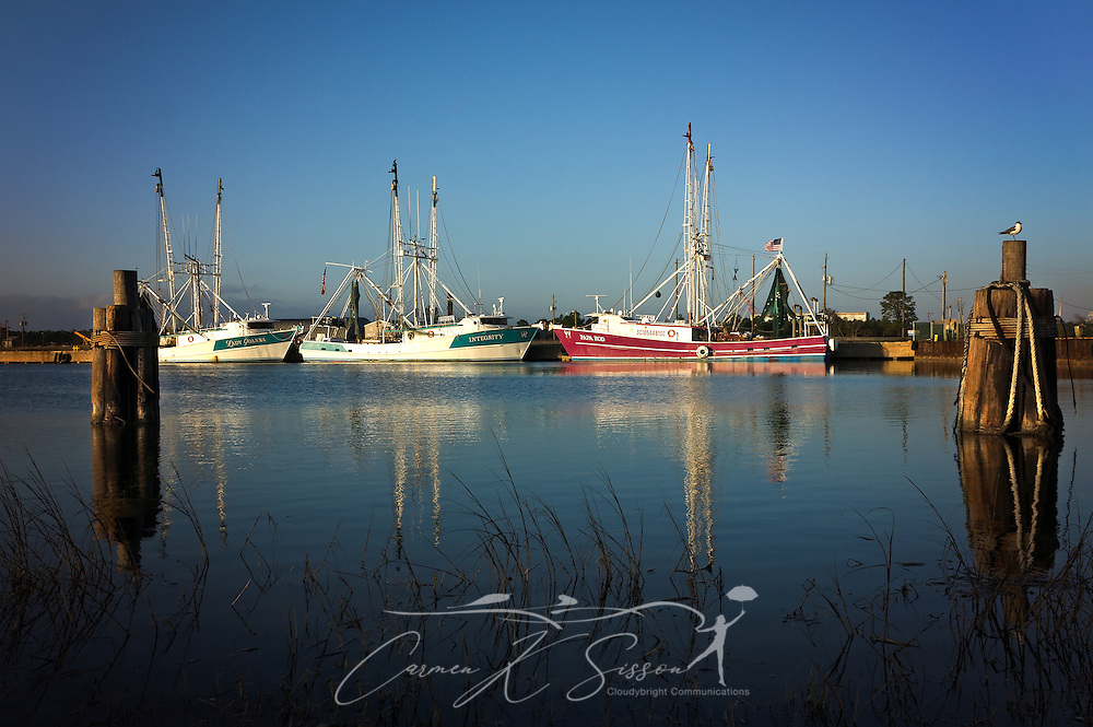 Shrimp boats are docked in Bayou La Batre, Dec. 24, 2016, in Bayou La Batre, Alabama. Pictured are Lady Joanna, Integrity, and Papa Rod. (Photo by Carmen K. Sisson/Cloudybright)