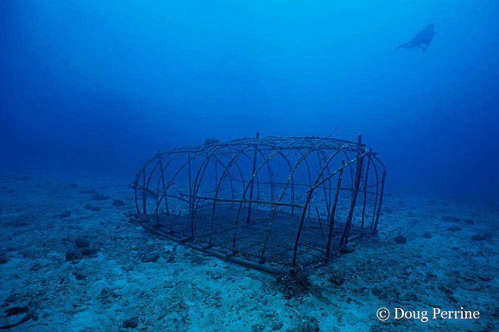 abandoned fish trap, Surin Islands, Thailand, ( Andaman Sea, Indian Ocean )
