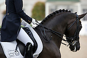 Nathalie zu Sayn Wittgenstein - Fabienne<br /> World Equestrian Festival, CHIO Aachen 2013<br /> © DigiShots