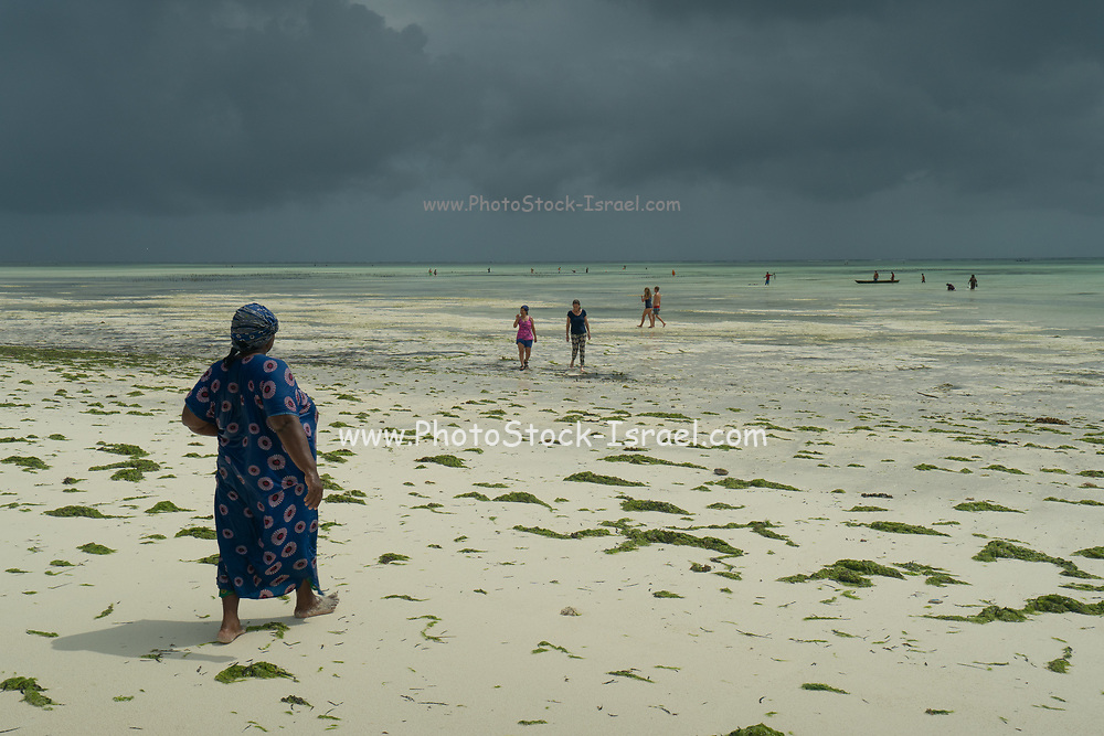 Local residents on the east coast of Zanzibar at low tide. Seaweed is scattered on the sand