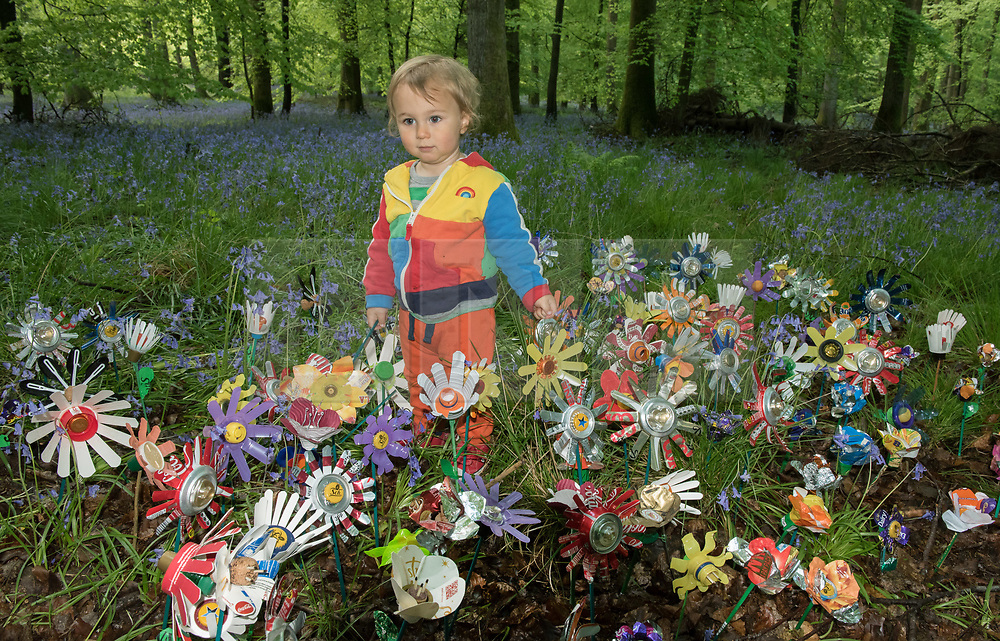 """© Licensed to London News Pictures. <br /> **EMBARGOED UNTIL 00.01am MONDAY 15 MAY, 2017**. Forest of Dean, Gloucestershire, UK. """"Please don't leaf it behind!"""" Ari Cussen (child) looks at flowers made from rubbish collected in the Forest of Dean. The scheme is part of a new behaviour change campaign by Hubbub to tackle the rural litter epidemic. www.hubbub.org.uk/trashconverter. Trash Converters launch in the Forest of Dean, with a display of flowers created from waste, and with a van that gives out free drinks and snacks in exchange for rubbish that people find and bring to convert. For further details about the launch on 15 May please contact:<br /> Rachel Parkes0777 565 2919 / rachel.parkes@greenhousepr.co.uk<br /> Helen Bell07880 560 233 / helen.bell@greenhousepr.co.uk <br /> Picture credit : Simon Chapman/LNP"""