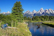 Photographer shooting moose cow and calf, Shwabackers Landing, Grand Teton National Park, Jackson Hole, Wyoming