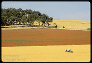 05: RURAL NSW FARMER, FIELDS