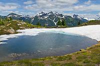 Mount Baker Wilderness, North Cascades Washington