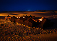 MEKNES - TAFILALET, MOROCCO - CIRCA APRIL 2017: Berber tents at night in the Sahara Desert