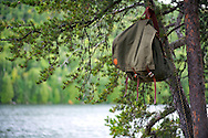 Food pack hanging from a tree in base camp in the Boundary Waters in Northern Minnesota. .