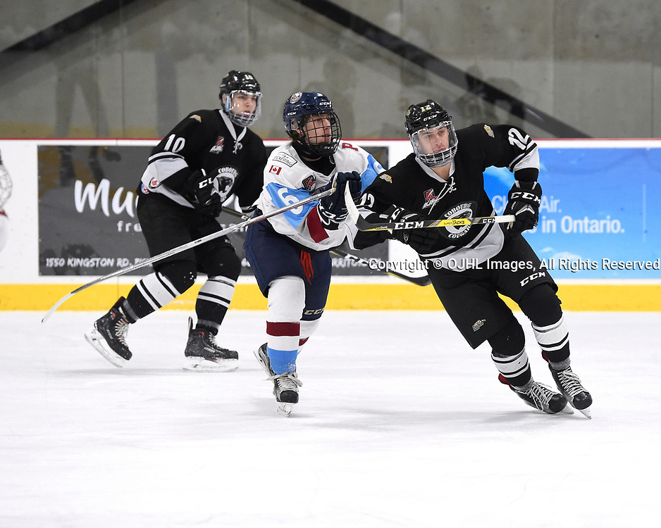 Ontario Junior Hockey League Game Between The Pickering Panthers And